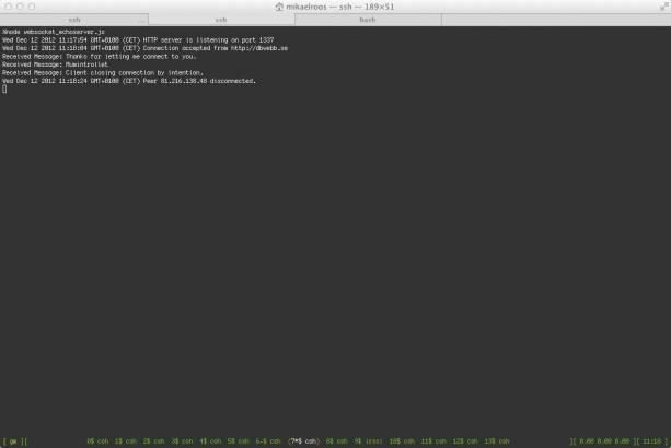Utskrifter från echo-servern i Node.js.