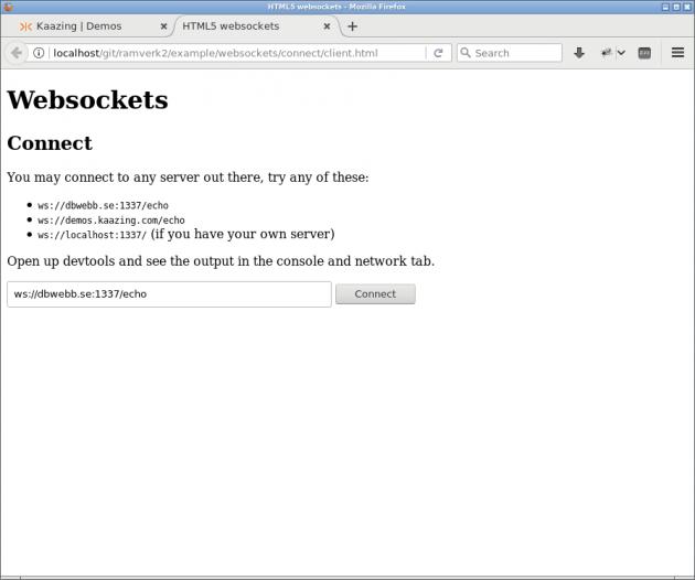 En klient som kan koppla upp sig mot en server via websocket.