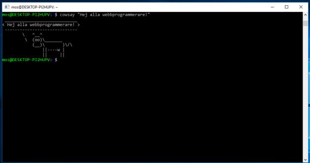 Nu är du redo för Bash på Windows.