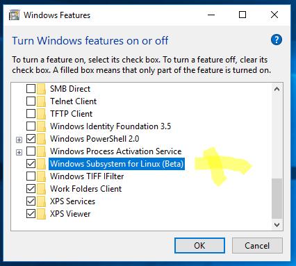 Sätt på Windows Subsystem för Linux.