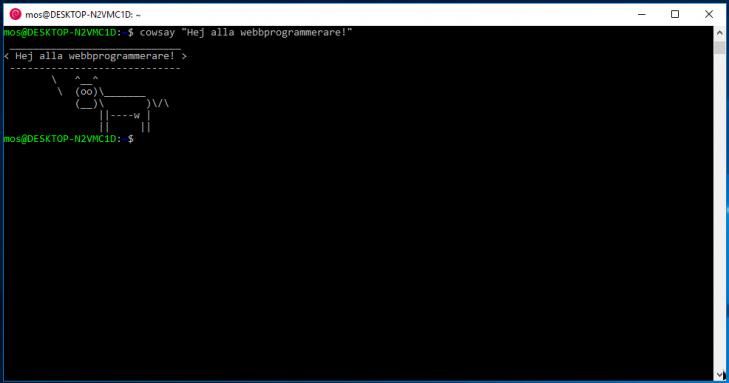 Nu är du redo för Linux med en bash-terminal på Windows.